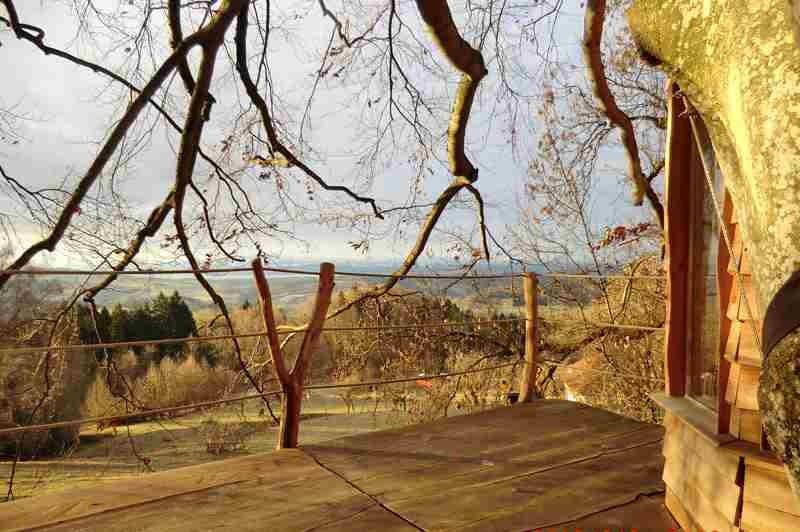 hangab-zentrum-baumhaus-bodensee-ausblick-terrasse