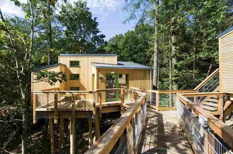Unter allen Baumhaushotels in NRW bieten nur die Baumhäuser der Jugendherberge Panarbora in Waldbröl Zugang zu einem Baumwipfelpfad