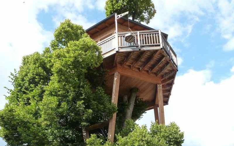 Baumhaus Prechtlhof: Wipfelsuite zum Verlieben