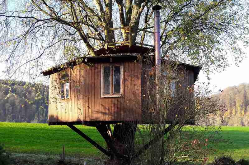 Im Unterschied zu allen anderen Baumhaushotels in NRW ruht das Siegtal Baumhaus bei Windeck ohne Bodenkontakt auf einem Ahornstamm.