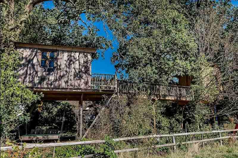Im Baumhaus Grove können bis zu 5 Gäste übernachten und die angeschlossene Infrarotsauna nutzen