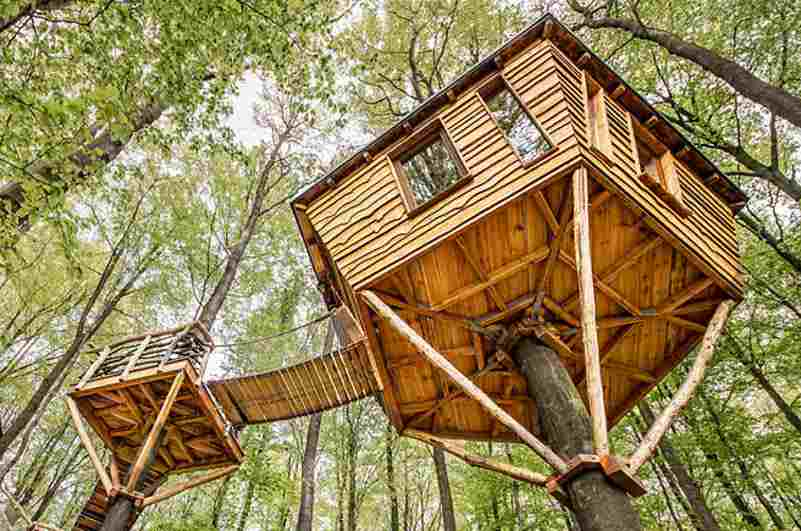 Stammbaumhaus im Baumhaushotel Robins Nest (Hessen)
