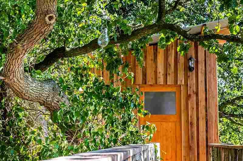 Ein eigener Steg führt vom Baumhaus zum Bad mit privater Infrarotsauna