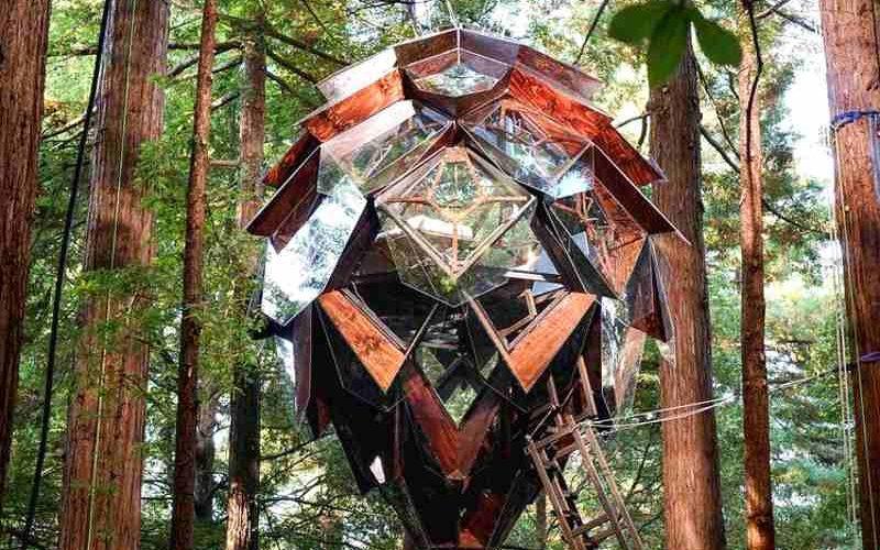 Pinecone Treehouse in Kalifornien: Spektakulär übernachten im Pinienzapfen