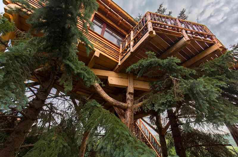 Das Baumhotel im niederösterreichischen Imbach bietet das beste Preis-Leistungs-Verhältnis aller Baumhaushotels in Österreich