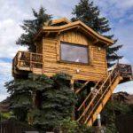 Baumhaushotels in Österreich: der Zugang zum Baumhotel Imbach erfolgt über eine steile Treppe