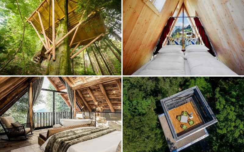 Baumhaushotels in Österreich – 17 luftige Quartiere für Wipfelstürmer