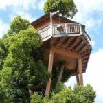 Baumhaushotels in Österreich: das Wellness-Baumhaus Prechtlhof in Kärnten verspricht himmlische Nächte in der Baumkrone einer alten Linde