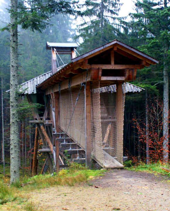 Das Baumhaus im Wildniscamp am Falkenstein gehört zu den abenteuerlichsten Baumhaus-Quartieren in Bayern
