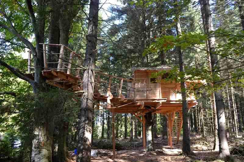 Baumhaushotels in Tschechien: durch seine Lage mitten im Wald Šumava eignet sich das Treehouse Volary perfekt, um Tiere zu beobachten