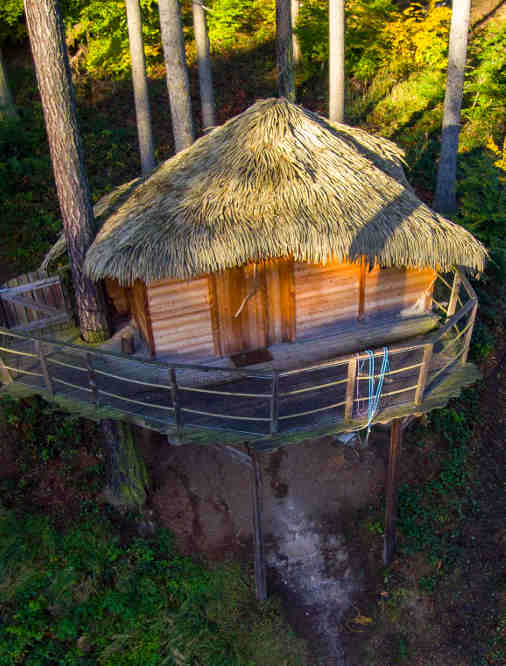 Ein Dach aus getrocknetem Schilfgras kennzeichnet die meisten Baumhaushotels in Tschechien