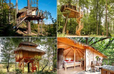 Die schönsten Baumhaushotels in Tschechien