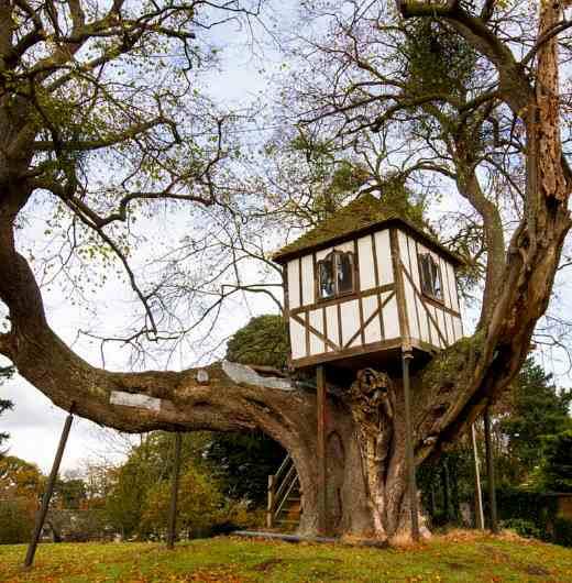Übernachten im Baumhaus: das älteste Baumhaus der Welt befindet sich in England