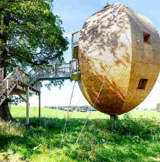 Mit seinem ungewöhnlichen Design fordert das Landei im Allgäu herkömmliche Baumhaushotels in Bayern heraus