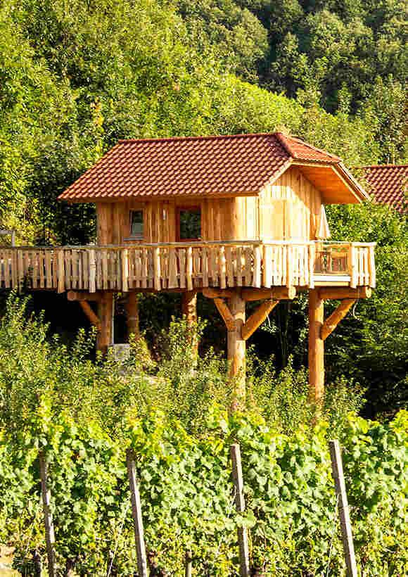 Übernachten im Schwarzwald Baumhaus Baden-Württemberg