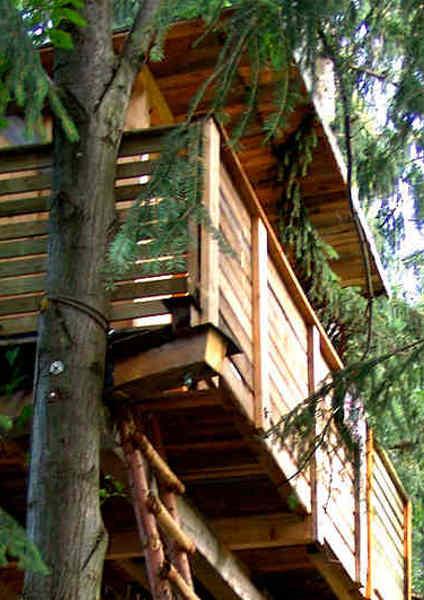 Das Baumhaus des Naturhotel Enzianhof gilt als erstes Baumhaushotel in Österreich