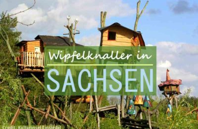 Coverbild zum Artikel Baumhaushotels in Sachsen