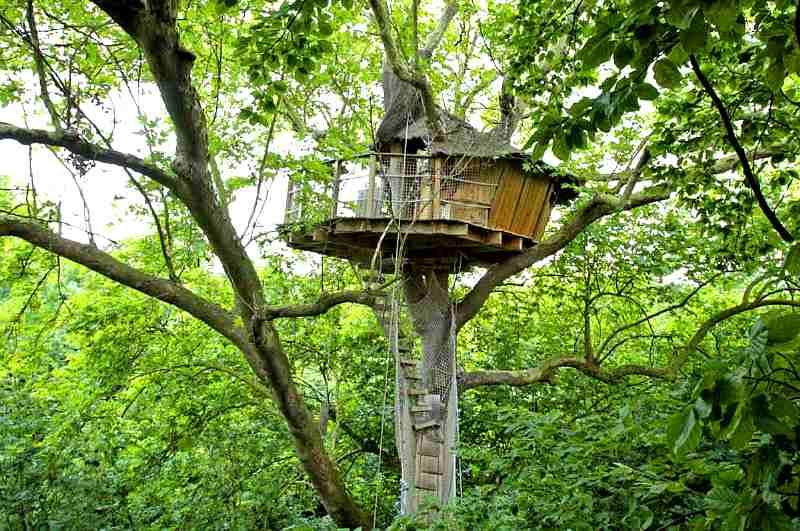 Das Baumhaus Nid d'Aigle in der Normandie gilt als höchstes Baumhaus Europas