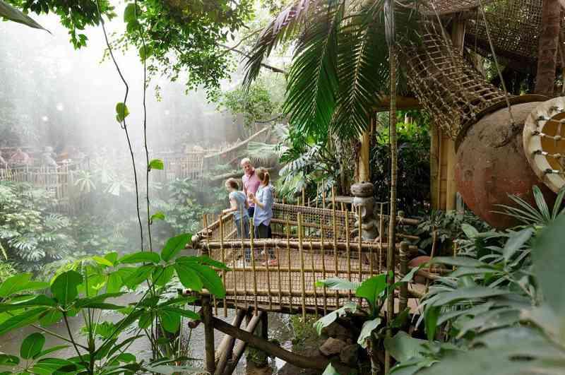 Jungle Cabana im Centerparc Het Heijderbos in den Niederlanden