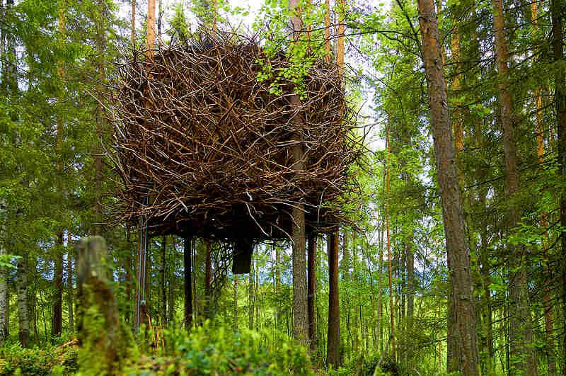 Birdnest im Treehotel Harads in Schweden (Ansicht Sommer)