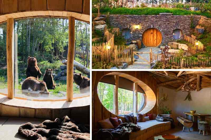 Seit 2020 können Besucher des Pairi Daiza Zoos in Belgien auch im Hobbit Haus übernachten. Die Full Moon Lodge bietet neben einer runden Eingangstür und Grasdach auch exklusive Einblicke ins Bären-Gehege.