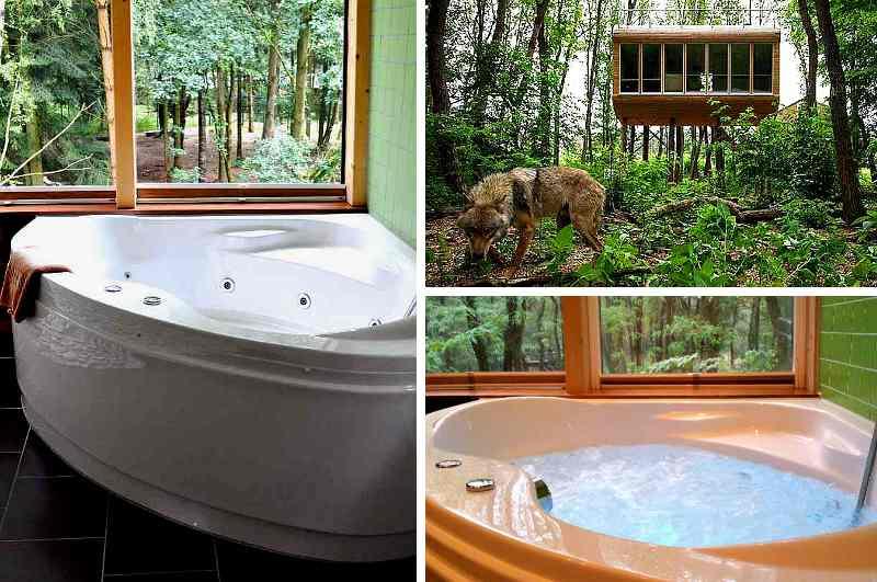 Eines der wenigen Baumhaushotels mit eigenem Whirlpool für die Gäste bietet das Tree Inn im Wolfcenter Dörverden